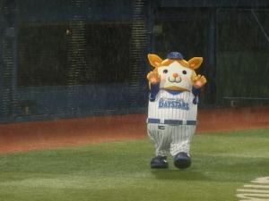 雨の中でも、がんばってくれました!