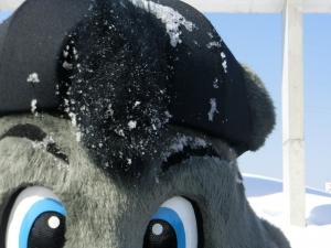 モヒカンも雪まみれ。