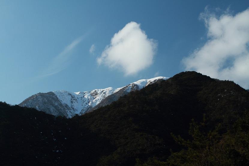 竜ヶ岳、43