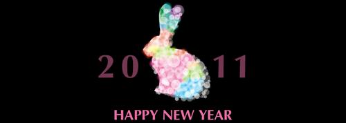 $エクストリームのほぼ日刊ブログ-HAPPY_NEW_YEAR_2011