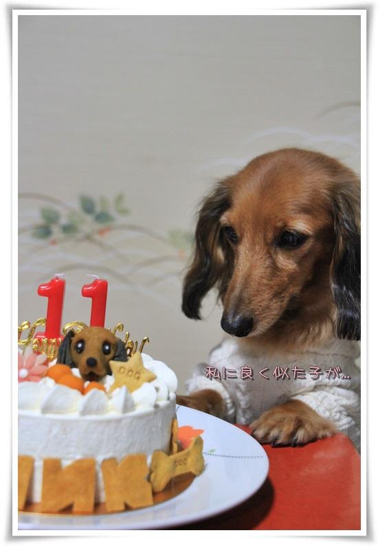 8 クリソツケーキ
