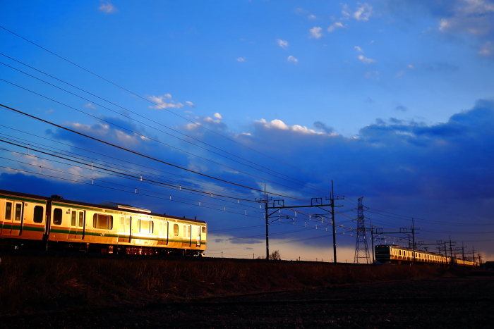BX1D3700.jpg