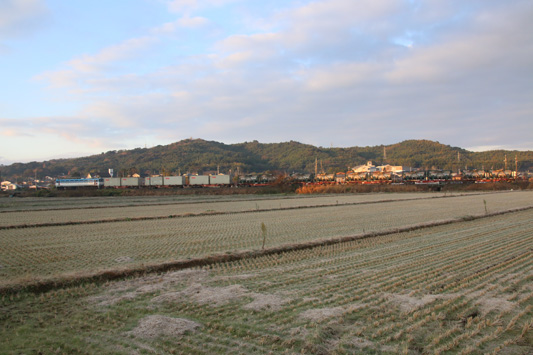 20160109隈川1151レ (11)のコピー