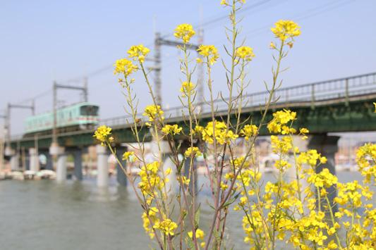 20160228西鉄中島 (111)のコピー
