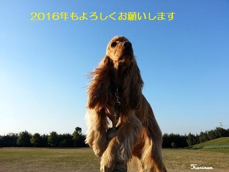 ブログ 1.12 ①