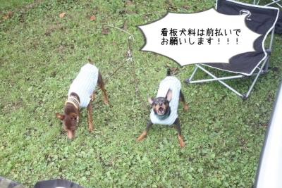 2015_09_27_9999_31.jpg