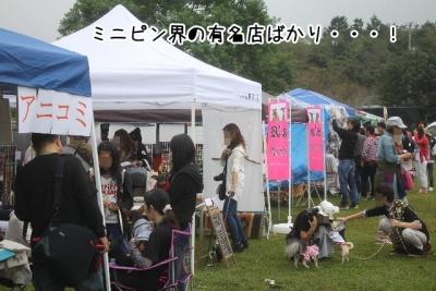 2015_09_27_9999_7.jpg