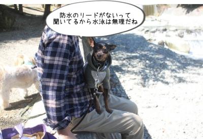 2015_10_03_9999_155.jpg