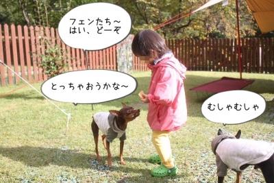 2015_10_03_9999_81.jpg