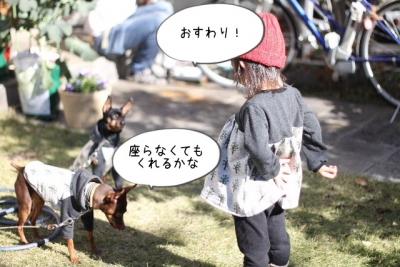 2015_12_05_9999_11.jpg