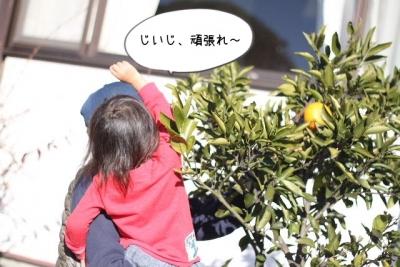 2015_12_29_9999_10.jpg