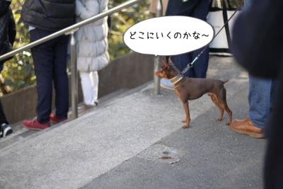 2016_01_01_9999_12.jpg