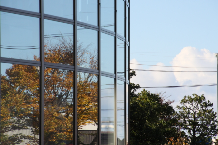 151103-cityhall-04.jpg