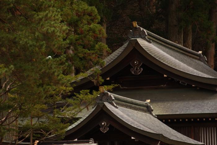 151121-taka-19.jpg