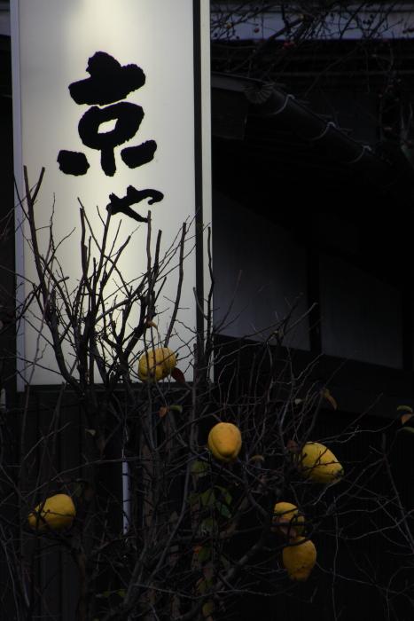 151121-taka-60.jpg