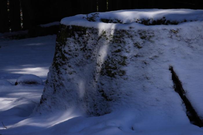 160207-snow-02.jpg