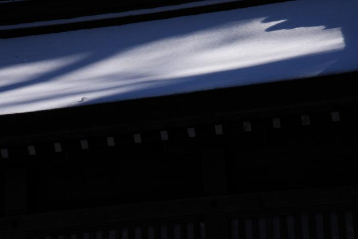 160207-snow-04.jpg