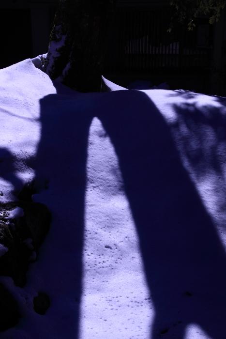 160207-snow-05.jpg