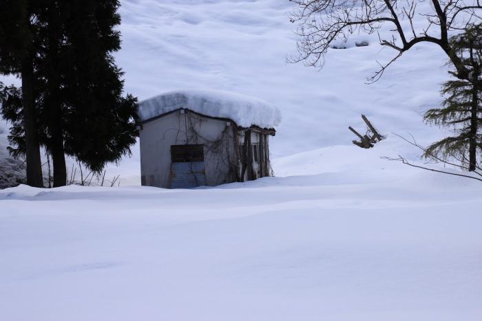160207-snow-17.jpg