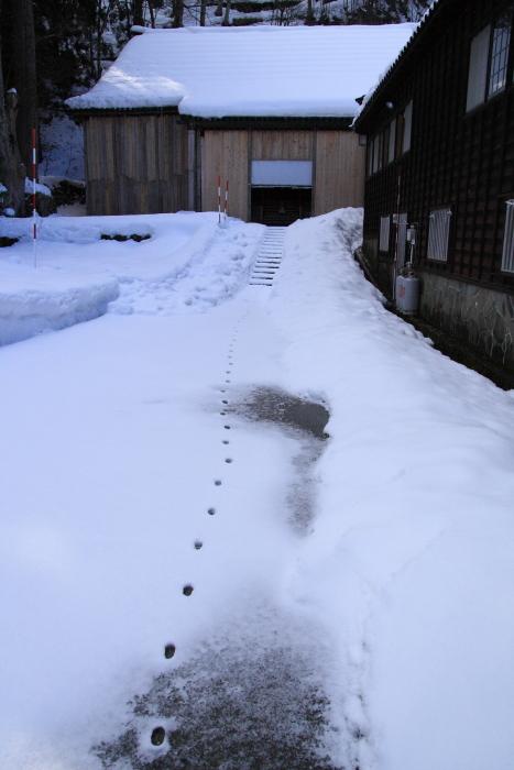 160207-snow-24.jpg