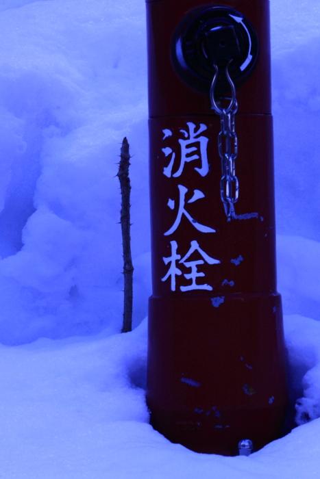 160207-snow-30.jpg