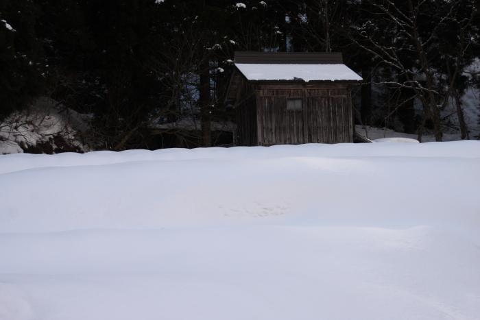 160207-snow-41.jpg
