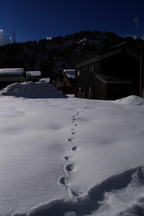 160207-snow-47.jpg