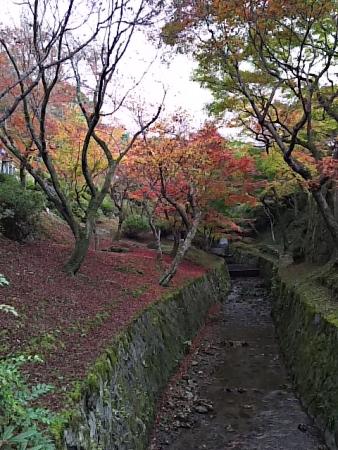 kyoto64.jpg