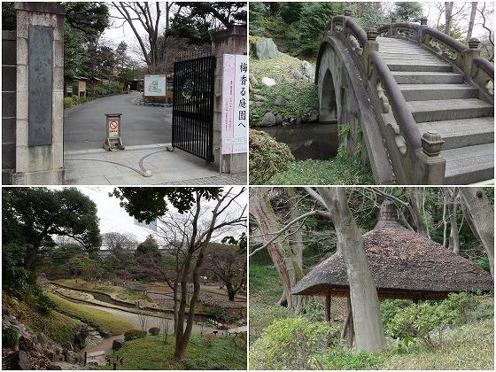 160222小石川後楽園-1