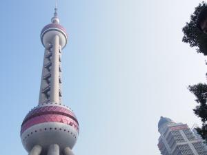 上海2−8