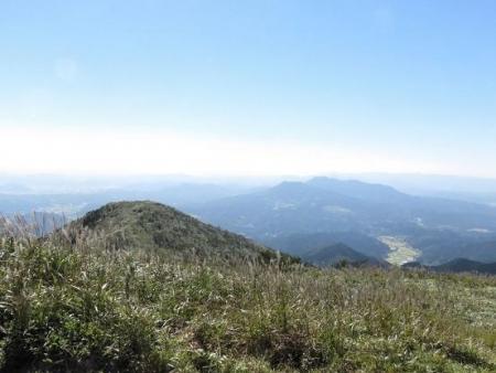 雨清水センブリ天山 153