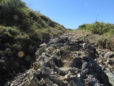 雨清水センブリ天山 141