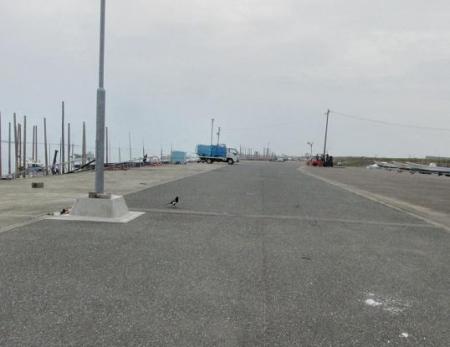 港の鶺鴒 001