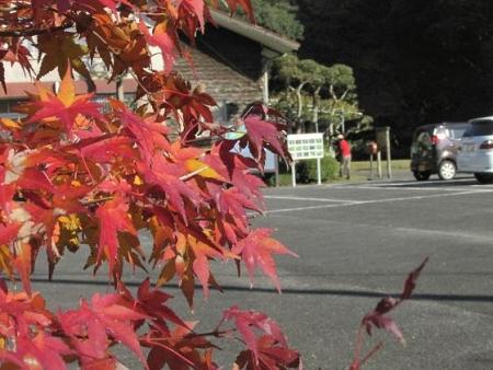 黒髪山 177