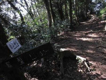 天童岩・吉野ケ里 073
