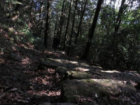 天童岩・吉野ケ里 072
