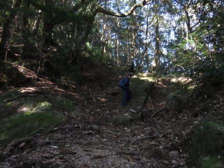 天童岩・吉野ケ里 064