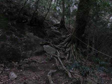 天童岩・吉野ケ里 104
