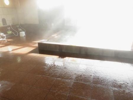 ヒヨドリ猫温泉 031