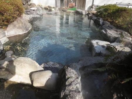 ヒヨドリ猫温泉 027