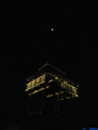 天童岩・吉野ケ里 225