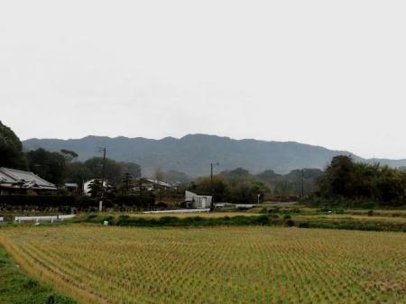 小岱山 002