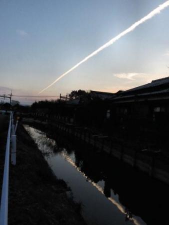 運動公園のカラス14日 雲15日 076