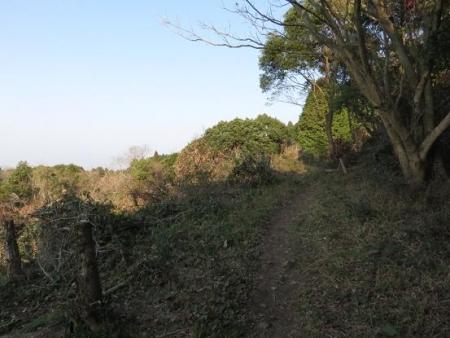 清水初登り 066