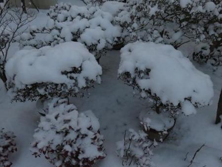 家の前雪 010