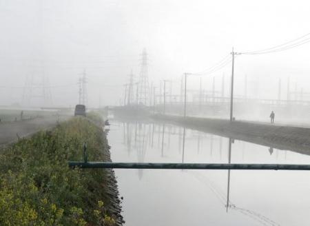 県立公園霧の朝 196