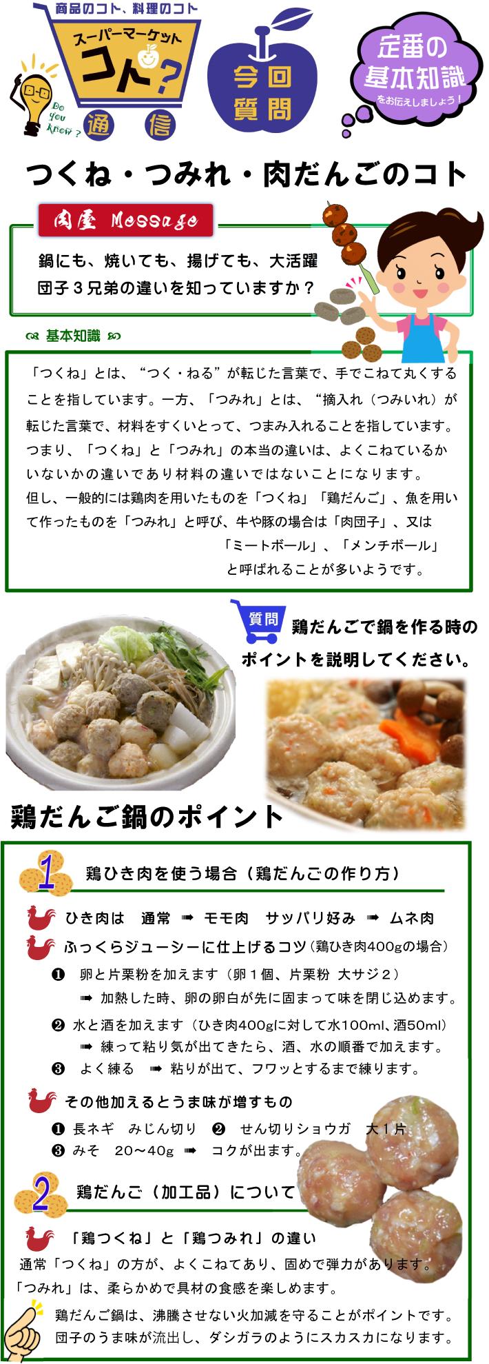 V15-3-Q-質問ポスター(カラー)肉団子-