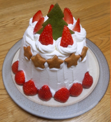 U_studiomimosaクリスマスケーキ
