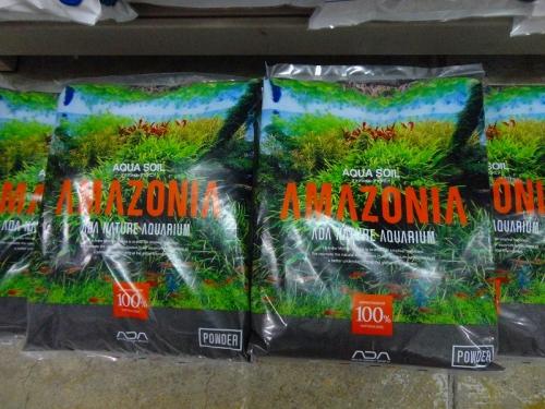 アマゾニア パウダー