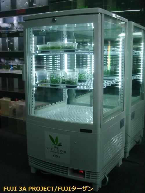 ADA冷蔵庫